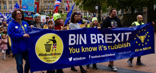 Anti Brexit Banner